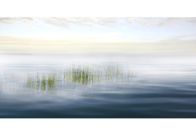 Fotodruck auf Leinwand - freies Composing